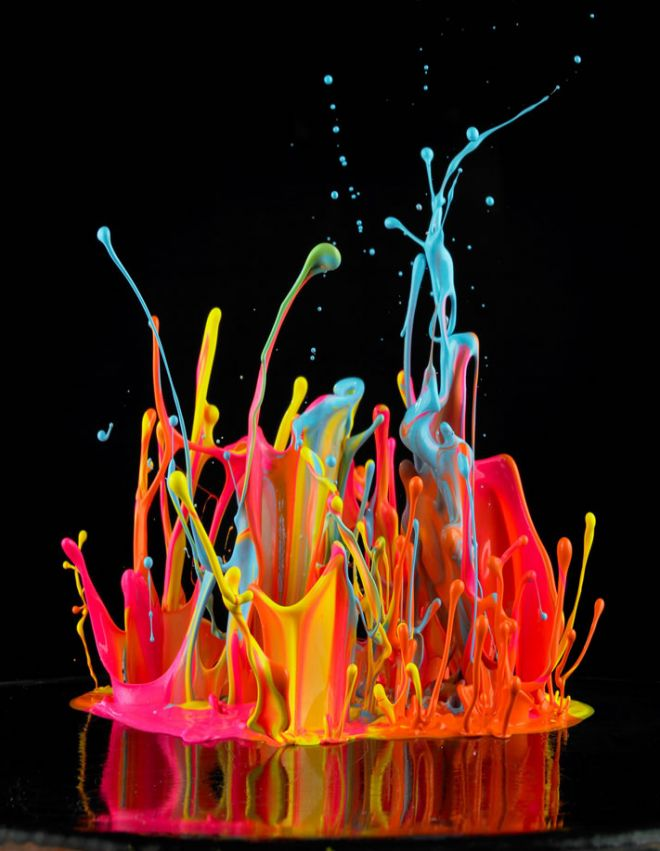 Pics of Exploding Flowers, From a Master of High-Speed Photography // These are really cool.