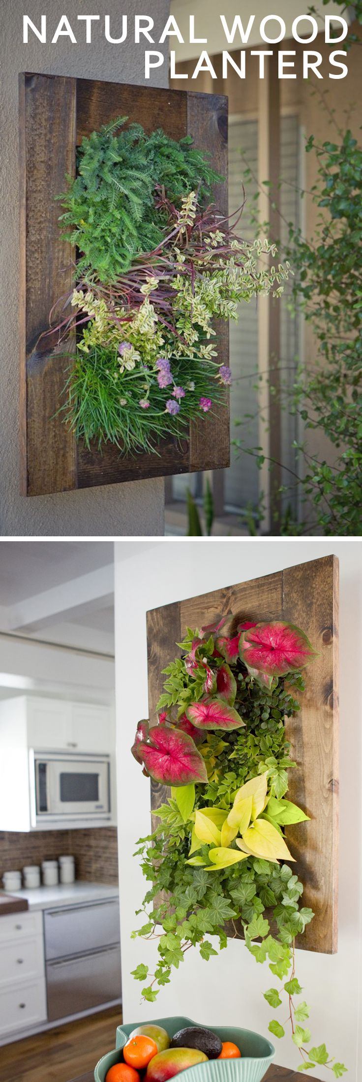 Brighten up your unused vertical space with a natural wood wall planter! The unique grain will beautifully complement your favorite arrangement!