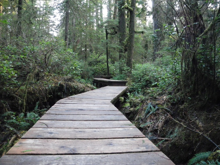 Schooner Cove.  This beautiful boardwalk trail leads you through the temperate rain forest and opens up onto a nice isolated beach