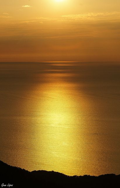 Golden silence ~ Photo by Gene Lopez on flickr