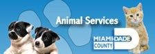 South Florida Veterinary Medical Association #veranstaltungen, #nonprofit, #organization, #social, #organization, #charity, #benevolence, #nonprofit, #social, #events http://usa.remmont.com/south-florida-veterinary-medical-association-veranstaltungen-nonprofit-organization-social-organization-charity-benevolence-nonprofit-social-events/  # Welcome to the South Florida Veterinary Medical Association The SFVMA supports Miami-Dade Commissioners Animal Services in an effort to end euthanasia The…