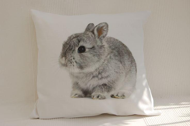zwierzęta/ króliczek