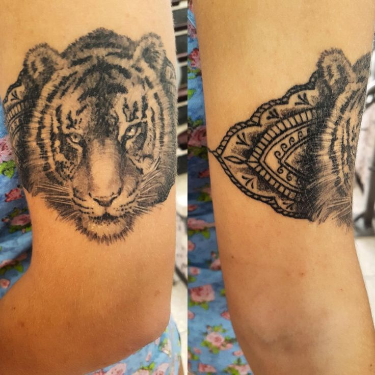 25 Best Ideas About Recovery Tattoo On Pinterest: 25+ Best Ideas About New Zealand Tattoo On Pinterest
