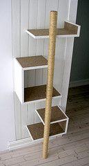 Cat shelves with scratching post behind the door
