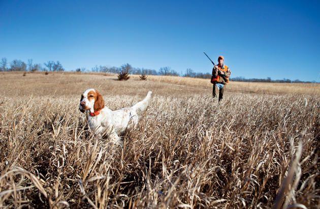 Colorado's Hunting Tradition | 5280