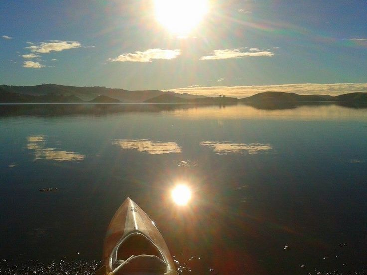 Kayaking along Broad Bay — Insiders Dunedin