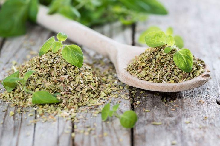 natural antibiotics. Garlic colloidal silver echinacea manuka honey oil of oregano
