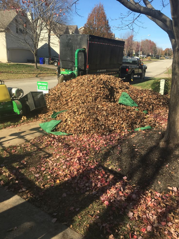 Did you know? That sweeping leaves, debris, and litter