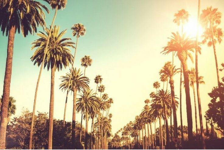 Flight Deal: Flights to Los Angeles $831 return and Las Vegas $843 return https://passportofwanderlust.com/flight-deal-flights-los-angeles-831-return-las-vegas-843-return/