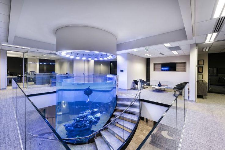 5m-deep aquarium-Orphek_LED