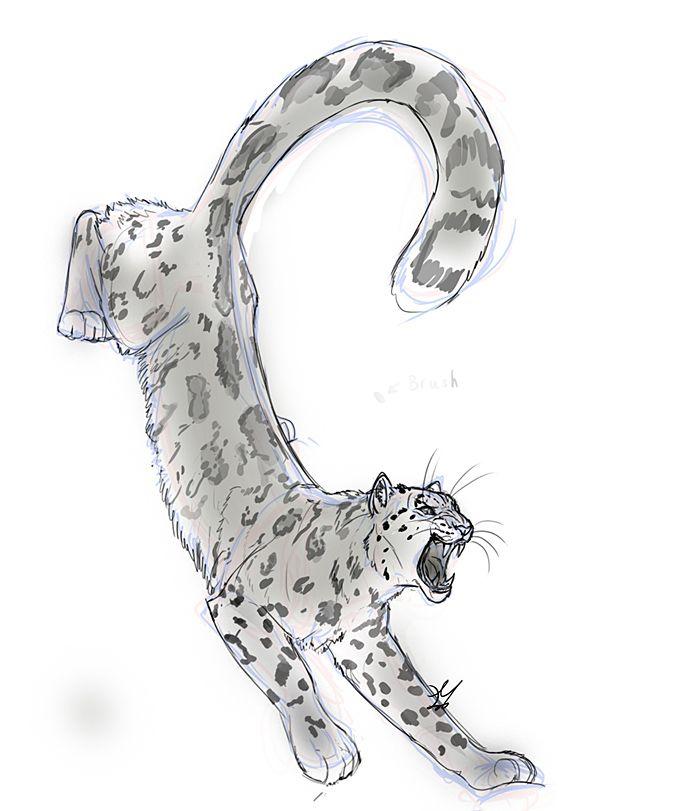 Snow Leopard by whisperpntr.deviantart.com on @deviantART