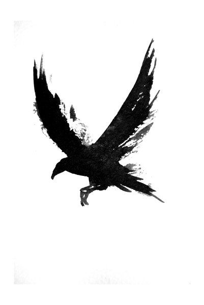 """""""Some people believe that ravens guide travelers to their destinations. Others believe that the sight of a solitary raven is considered good luck. While a group of ravens predicts trouble ahead. And a raven right before battle promises victory."""""""