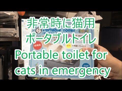非常時に猫用ポータブルトイレ