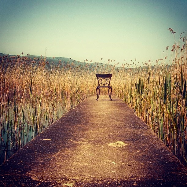 Instagram photo by @Sherilyn Beiler Mast Yamak via ink361.com