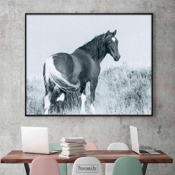 Rabid Horse Artwork Home Facebook - 570×570