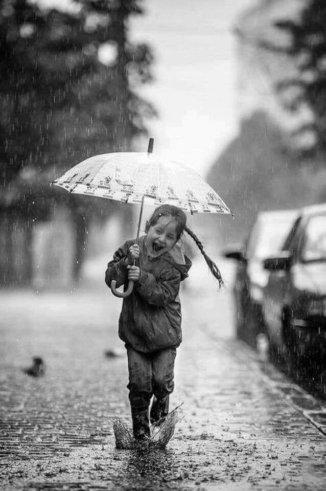 политики придерживаются картинки дождь счастье красиві