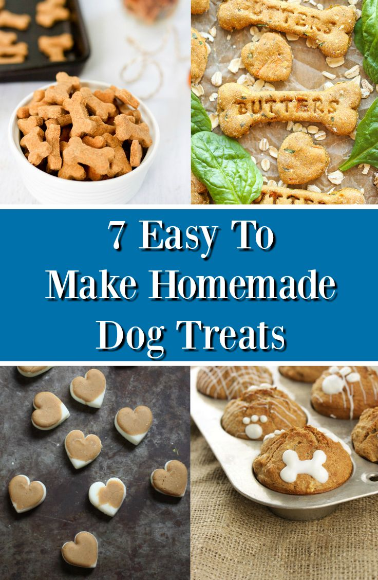 Best Way To Train A Dog Without Treats