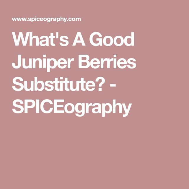 What's A Good Juniper Berries Substitute? - SPICEography