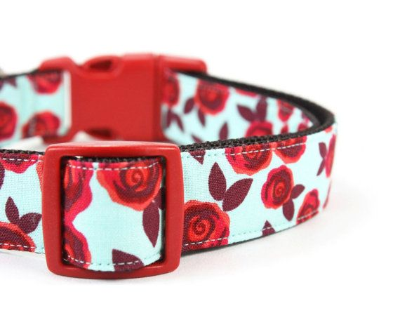 Red Rose Dog Collar Girly Roses Floral Dog Collar Aqua Blue Retro Girl Dog Collar - Rhoda