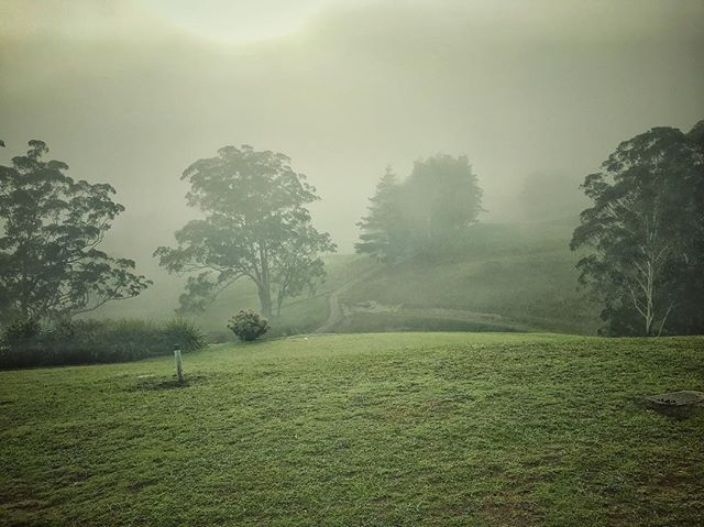 Waking up to the morning mist blanketing the rolling green hills at Kangaroo Valley Golf & Country Resort @kvgcr @visitshoalhaven #kvgr #kangaroovalleygolfandcountryclub #kangaroovalley #shoalhaven #golfcourse #weekend #weddinganniversary #clovarcreative #green #landscape #escape #newsouthwales #australia