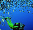The oceans happen to be where most fish will be found. The more the fish supply the more thriving the activity will be. The following is a list of the top 10 countries have lot of fishes in the world.