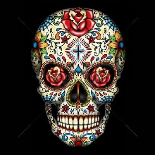 Day of the Dead Sugar Skull With Red Roses Womans Short Sleeve T Shirt 16553