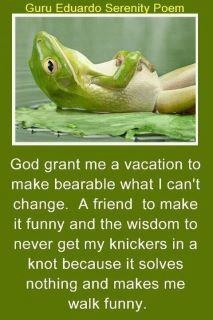 All true: Words Of Wisdom, Need A Vacations, Quotes, Friday Funny, Frogs, Funny Friends, Knot, Wise Words, Serenity Prayer