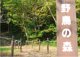 Okayama|岡山(おかやま)|岡山農業公園 ドイツの森|野鳥の森| 自然の森は、野鳥の楽園! 自然の森は、野鳥の楽園。耳を澄ませば小鳥達のさえずりが聞こえてきます。 野鳥の森の頂上目指して体力作りにちょっとした運動が出来ます。 頂上からの眺めは気持ちイイ! 入り口はバズーカ砲横にあるよ  所要時間/約15分片道
