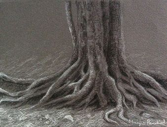 Charcoal and white pastel pencil sketching of a tree with exposed roots created on dark grey Canson Mi Teintes paper. Artist Manju Panchal