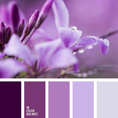 лиловые оттенки, лиловый цвет, монохромная палитра, монохромная фиолетовая цветовая палитра, оттенки лилового, оттенки сиреневого цвета, оттенки фиолетового, сиреневый цвет, темно-сиреневый, темно-фиолетовый, темно-фиолетовый и сиреневый, темно-