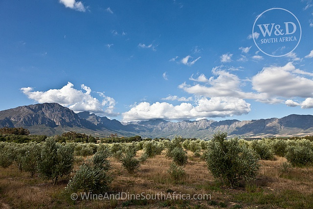 Tulbagh Valley, Western Cape by christoph.rebok, via Flickr