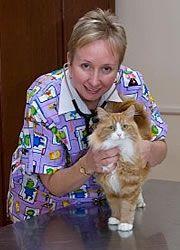 Dr Jenni Trewren BVSc (Hons) MANZCVS (Small Animal Medicine) CMAVA