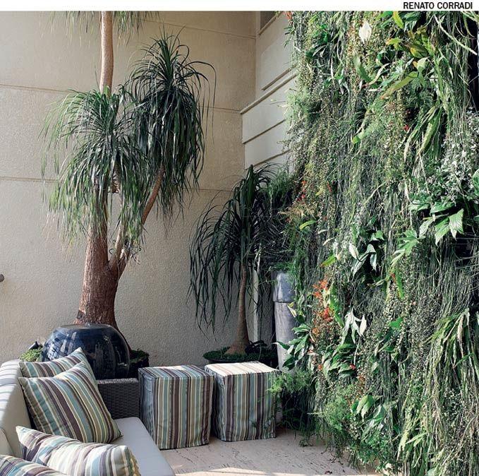Jardins verticais são uma ótima solução para esconder paredes ou muros altos. Algumas espécies ideais para esse uso: ripsális, columeia, samambaia e orquídeas. Projeto de Ana Paula Magaldi.