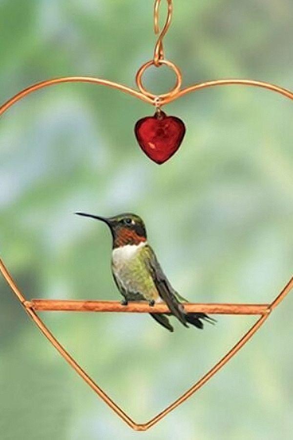 Copper Tweet Heart Hummingbird Swing With Red Heart Shaped Hanging Bead Dm 645194610446 Ebay Hummingbird Swing Humming Bird Feeders Hummingbird Perch