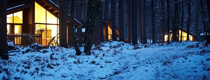 Let us take care of Christmas at Forest Holidays 2015 and 2016