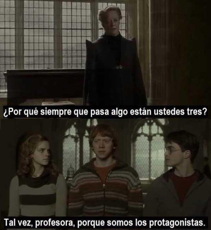 15 memes extremadamente graciosos de Harry Potter - Imagen 10