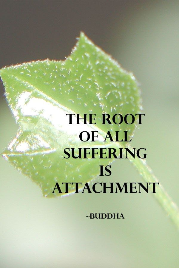 Root of all suffering is attachment.  #quote #wisdom #buddha
