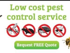 Pest Control services in Dubai - Golden Leaf offers cost-effective services that are completely adaptable for all of your premises needs. Free quote now! Visit:http://glpc-uae.com/pest-control-dubai/