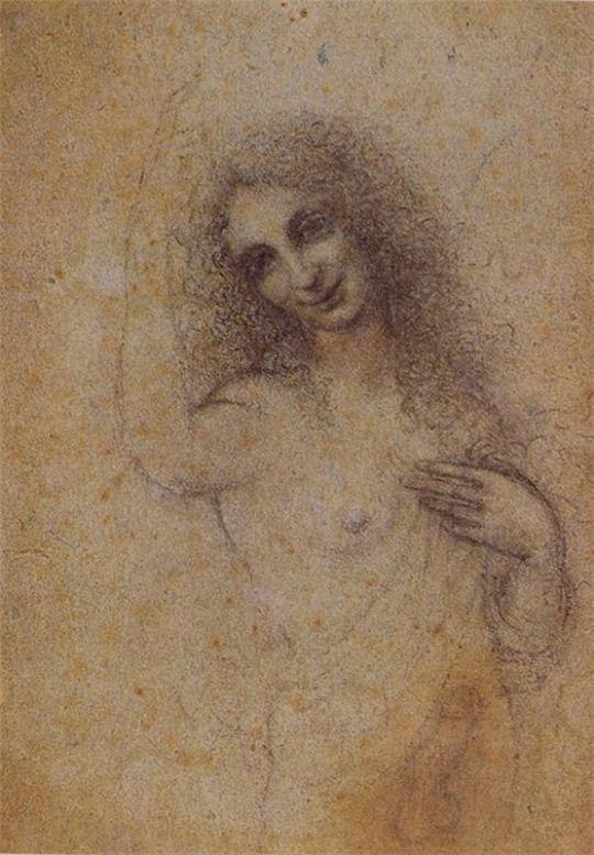 Leonardo da vinci erotica