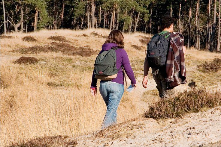 Wandelen bij het Hulsbeek. Verschillende prachtige routes vanaf Villapark Eureka