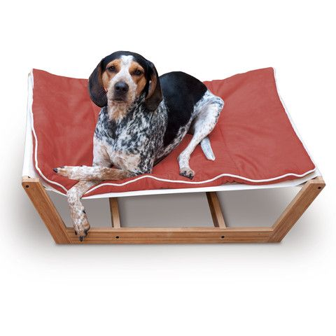 eco elegant bamboo pet hammock in tangerine  matching bamboo diner also available  76 best bamboo pet products images on pinterest   pet supplies      rh   pinterest