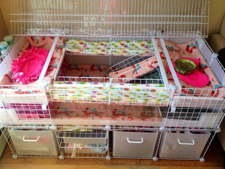 25 best ideas about c c cage p pinterest for How to make a cheap guinea pig cage