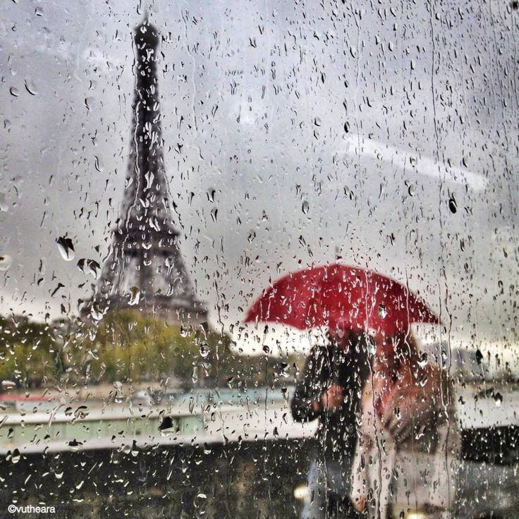 это декоративный картинки дождя в париже грозном берегу водохранилища