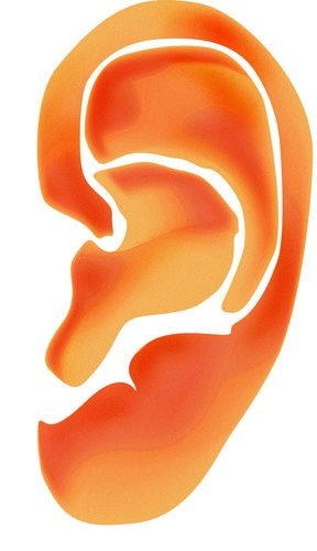 Itchy Crusty Scaly Ears More On Seborrheic Dermatitis