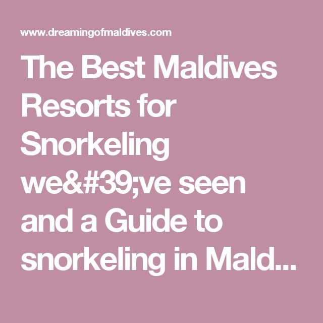 The Best Maldives Resorts for Snorkeling we've seen and a Guide to snorkeling in Maldives