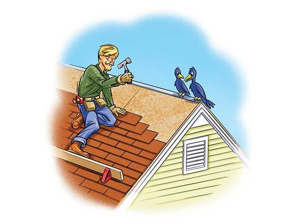 Eco Friendly Roofing Options   Green Homes