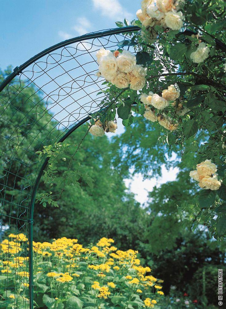 Drôtený držiak na ruže Arcoflor je to krásny drôtený oblúk ktorý môže byť či už vchodom do záhradky alebo niekde v nej ako doplnok. Krásne sa na ňom vynímajú popínavé rastliny ako ruže, brečtan ...