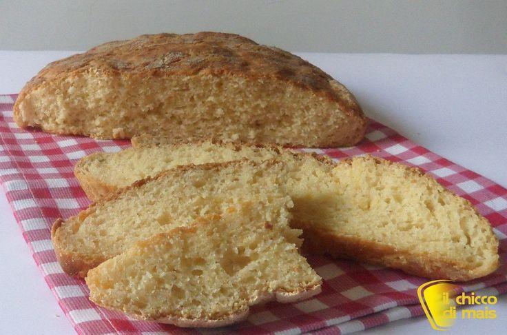 Pane di mais senza glutine ricetta con LM il chicco di mais