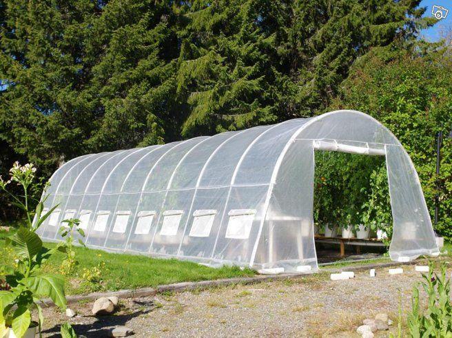 Ladda upp inför våren med ett tunnelväxthus från Växthusbutiken.  Oavsett om du vill börja odla lite grönsaker för att förgylla sommarmiddagarna eller har siktet inställt på självförsörjning har vi ett tunnelväxthus för dig. Växthusen är lätta att mo...