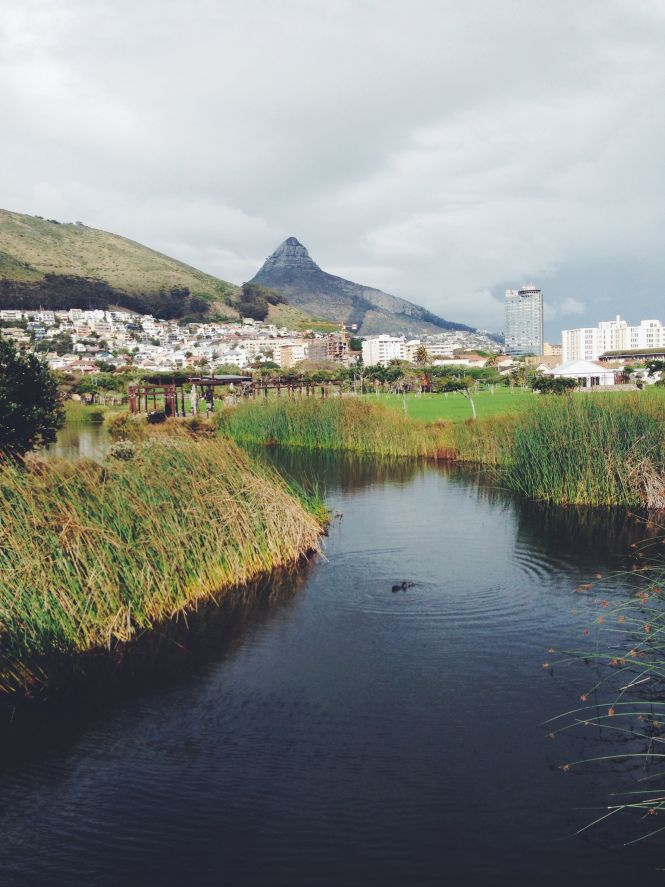adventures | green point urban park, cape town, south africa | lots of space, stretches of water, plenty of jungle gyms and breathtaking views